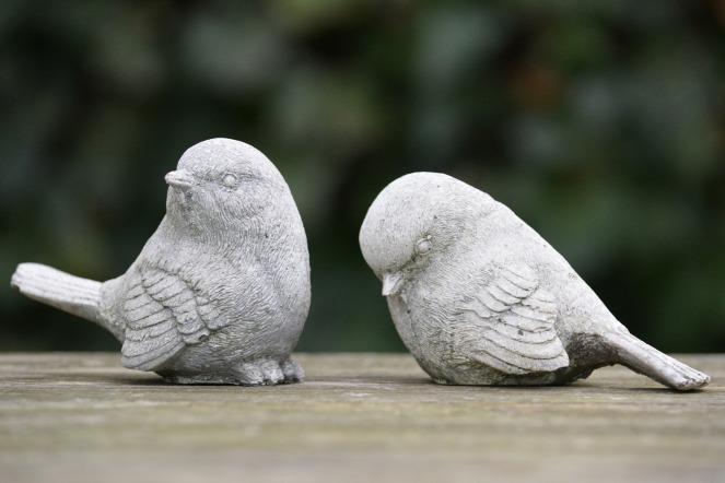 birds-276191_1920
